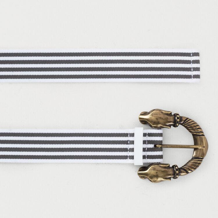 Striped belt : Belts color Grey